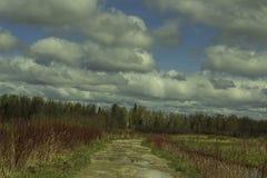 Camminando lungo le piste al Alvar immagine stock