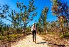 Camminando lungo una pista del cespuglio in Australia fotografia stock libera da diritti