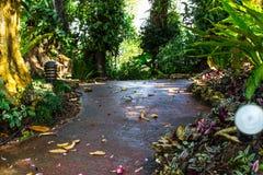 Camminando nel giardino immagine stock