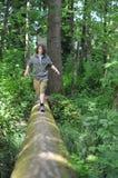Camminando nel legno fotografia stock libera da diritti