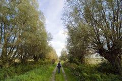 Camminando nel paese Fotografia Stock