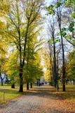 Camminando nel parco del quadrato della cattedrale nella città di Vilnius Immagini Stock Libere da Diritti