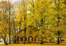 Camminando nel parco di autunno in vecchia città Fotografia Stock