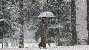 Camminando nel parco durante la neve video d archivio