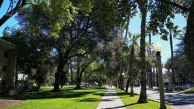 Camminando nell'università di Redlands stock footage