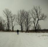Camminando nella neve Immagine Stock Libera da Diritti