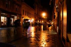 Camminando su e giù a Budapest Immagine Stock