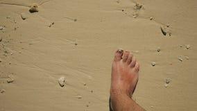 Camminando su una spiaggia giallo sabbia tropicale stock footage
