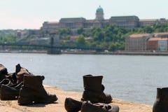 Camminando sul fiume Fotografie Stock Libere da Diritti