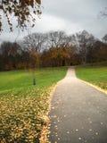 Camminando sul parco Fotografia Stock Libera da Diritti