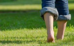 Camminando sull'erba Fotografie Stock