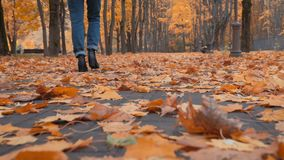 Camminando tramite i fogli di autunno video d archivio