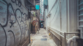 Camminando tramite portone nascosto Immagine Stock