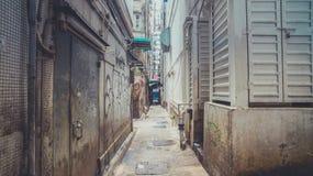 Camminando tramite portone nascosto Fotografie Stock Libere da Diritti