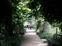 Camminando in un giardino magico fotografia stock libera da diritti