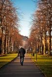 Camminare dell'uomo anziano Immagini Stock Libere da Diritti