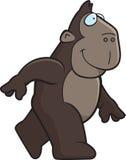Camminare della scimmia Fotografia Stock Libera da Diritti