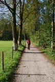 camminare di estate fotografie stock libere da diritti