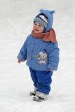 Camminare di inverno. Immagini Stock Libere da Diritti