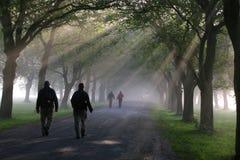Camminare di mattina Immagine Stock Libera da Diritti
