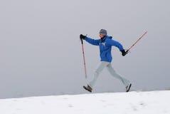 Camminare nordico immagini stock