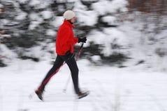 Camminare nordico fotografia stock libera da diritti
