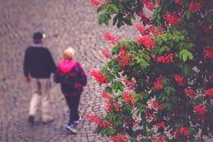 Camminata anziana irriconoscibile delle coppie Immagine Stock