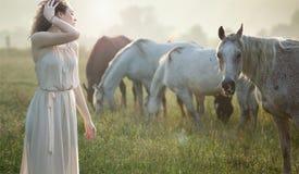 Camminata castana di Aluring accanto ai cavalli fotografie stock libere da diritti