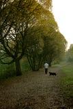 Camminata con un cane Fotografia Stock