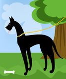 Camminata del cane illustrazione di stock