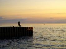 Camminata del cane di tramonto Fotografia Stock