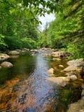 Camminata del fiume immagini stock libere da diritti