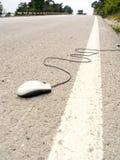 Camminata del mouse Fotografia Stock