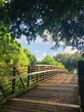 Camminata del ponte Immagini Stock