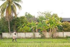 Camminata dell'agricoltore Fotografia Stock Libera da Diritti