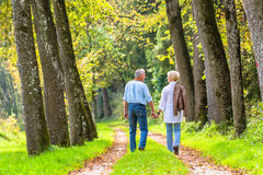 Camminata della mano della tenuta della donna e dell'uomo senior Immagine Stock