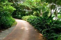 Camminata della natura Immagini Stock