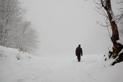 Camminata della nebbia di inverno della neve da solo Immagine Stock