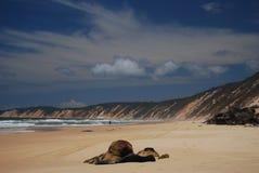 Camminata della sabbia della spiaggia dell'arcobaleno Immagine Stock Libera da Diritti