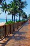 Camminata della scheda alla spiaggia Immagine Stock