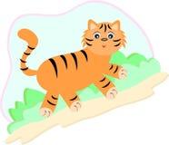 Camminata della tigre Immagine Stock