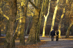 Camminata di autunno Immagine Stock Libera da Diritti
