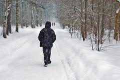 Camminata di caduta della neve di inverno Fotografia Stock Libera da Diritti