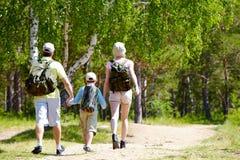 Camminata di estate fotografia stock