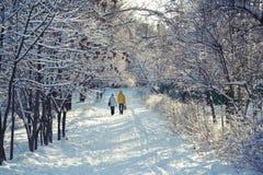 Camminata di inverno Fotografia Stock