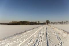 Camminata di inverno Immagine Stock Libera da Diritti