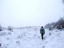 Camminata in inverno Immagine Stock