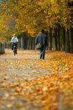 Camminata nella sosta di autunno Fotografie Stock Libere da Diritti