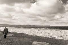 Camminata nella tempesta di inverno sulla spiaggia. Immagini Stock