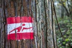 Camminata nordica Fotografia Stock Libera da Diritti